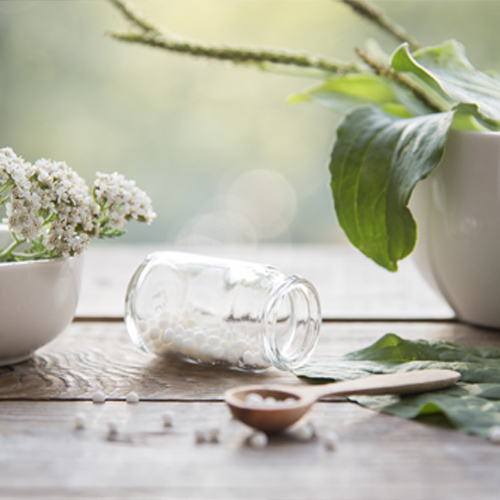 Intro to Homeopathy Image